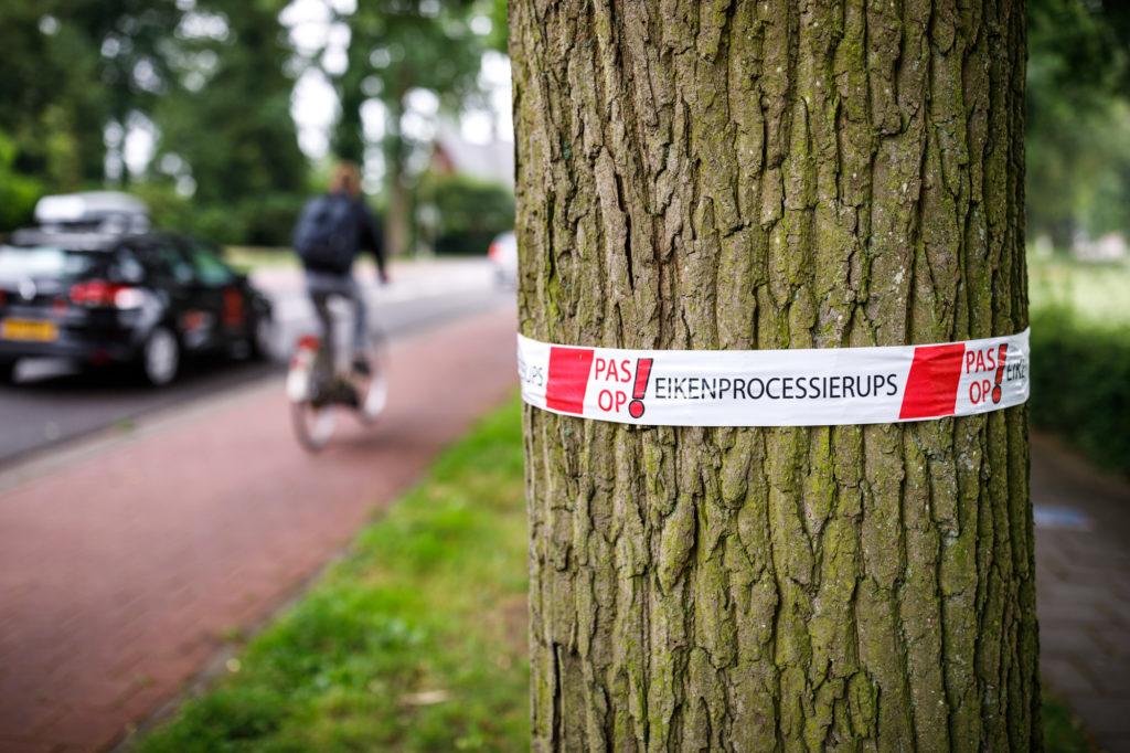 Een waarschuwingslint om een boom aan de Stationsweg.